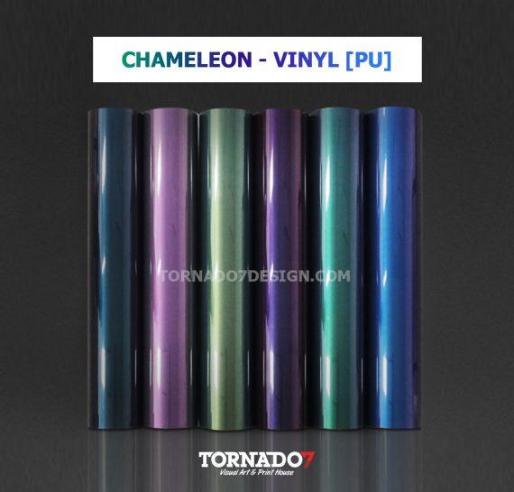 vinyl-CHAMALEON-product-cover